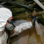 Asbestos Testing 2
